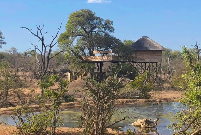 Pondoro Safari Game Lodge Treehouse