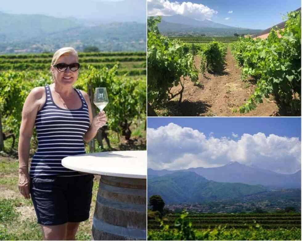 Wine Tasting in Murgo Winery, Santa Venerina