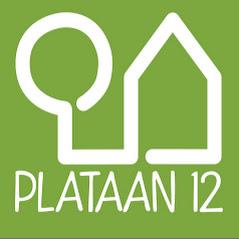 PLATAAN12