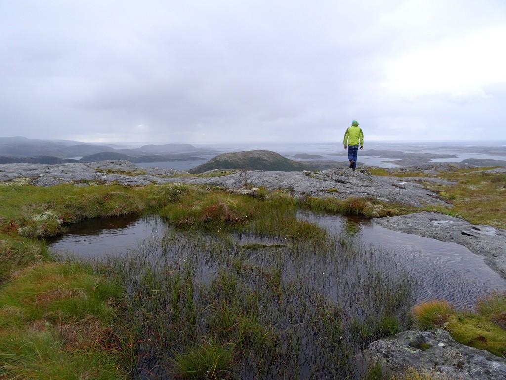 Fjords Northern Lights
