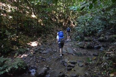 Début de la randonnée de la cascade Couleuvre