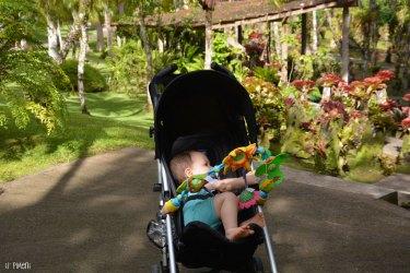 Jardin de Balata en poussette