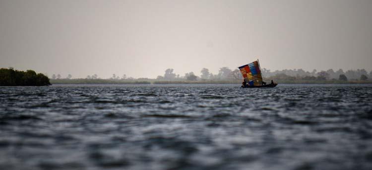 ©Anaïs Girad-fleuve Saloum au Sénégal-Anais Girard-Blanc