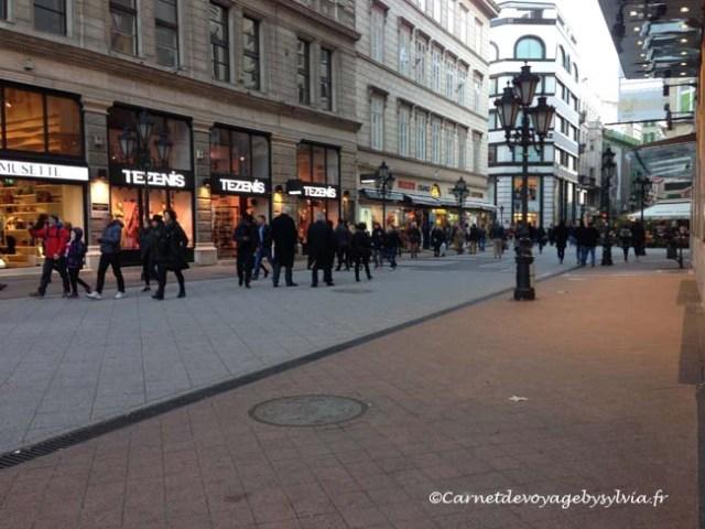 centre-ville de Budapest