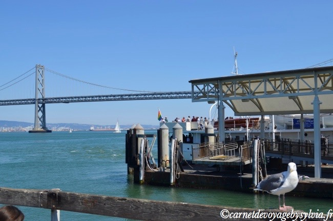 vues depuis Fisherman's Wharf à San Francisco