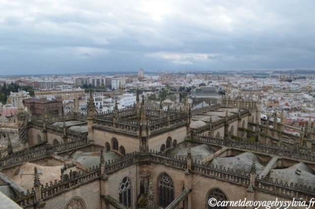 vue depuis la Cathédrale de Séville