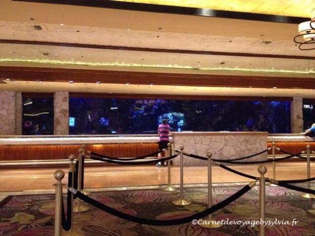 aquarium du mirage