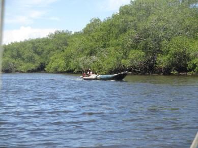 Le trajet sur le fleuve entre Valenca et Boipeba