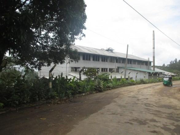fabrique de thé près de Kandy