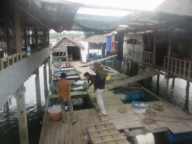 restaurant de pêcheurs Quy Nhon