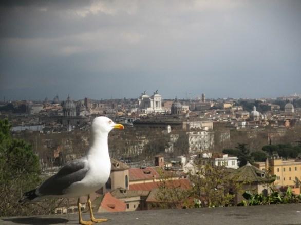 vue de Gianicolo, Rome