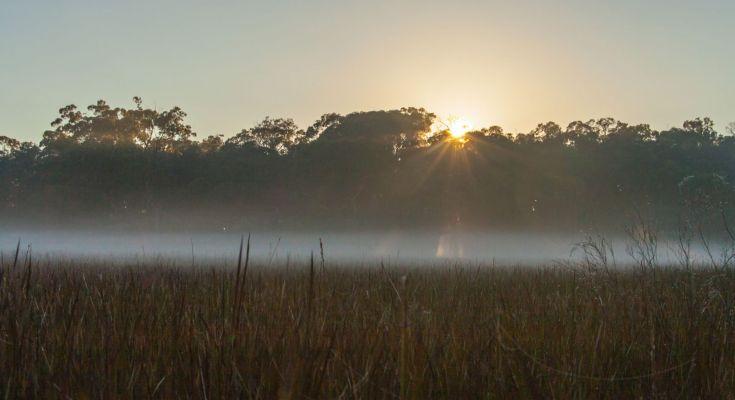 Słońce i mgła