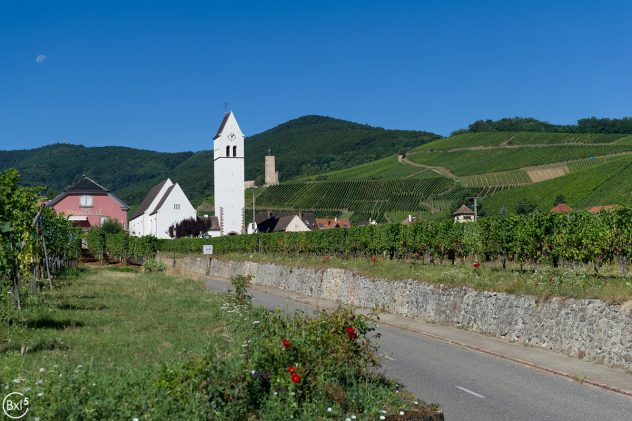 Alsace 2016 - 081