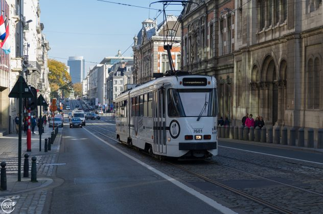 le Tram Experience - 031