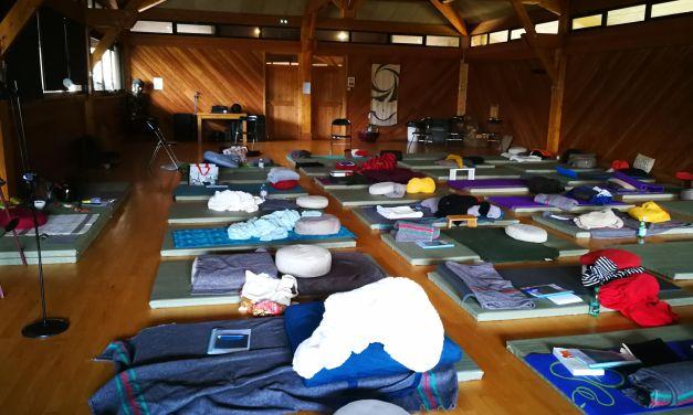 Et si je participais à un groupe de méditation de chez moi ?