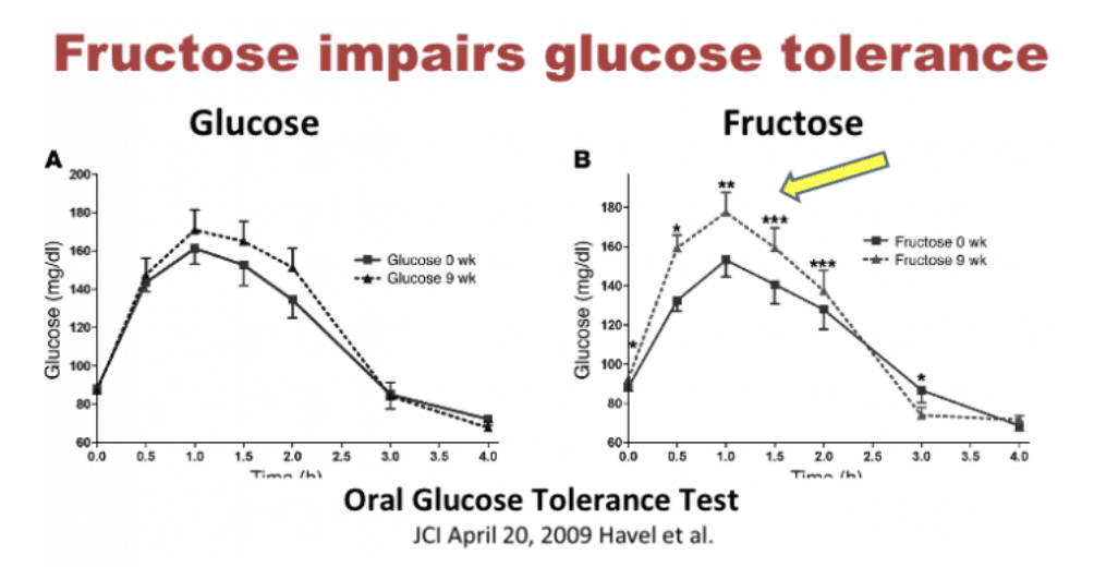 Fructose causes insulin resistance