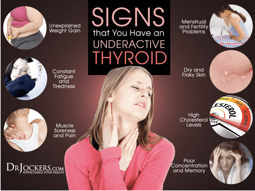 Oxalates and thyroid issues