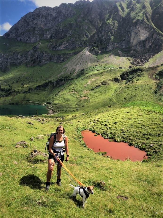 lac de lioson chien autorisé