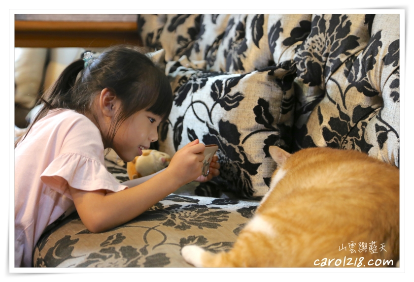 [台中]朵喵貓~充滿乾燥花與可愛插畫的隨性溫暖貓咪餐廳
