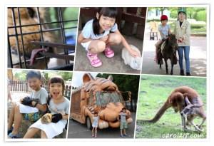 網站近期文章:九州自然動物園~叢林巴士餵猛獸、抱抱可愛的小動物,親子必遊豐富好玩的野生動物園
