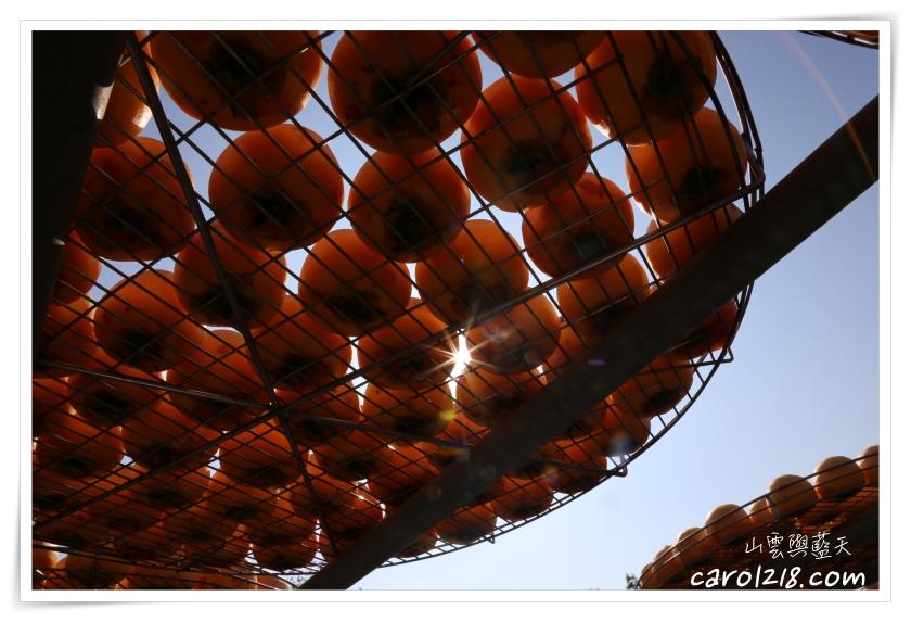 曬柿餅,柿之鄉,柿之鄉柿餅,苗栗公館,苗栗公館景點,苗栗景點,苗栗曬柿餅,苗栗親子遊