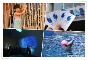 網站近期文章:[北九州自駕]大分海之卵水族館~和動物做朋友的水族館