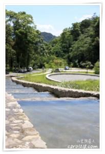 網站近期文章:[埔里]能高親水公園&能高瀑布~埔里另一個風景優美的玩水去處