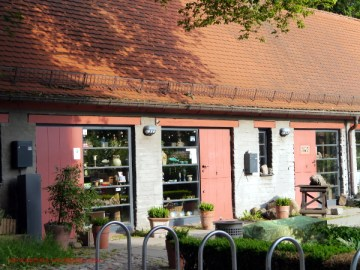 Schauwerkstatt im Klosterhof in Bergen (c) Carola Peters