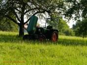 Traktor (c) Carola Peters