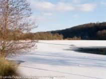 winterlandschaft (c) Carola Peters