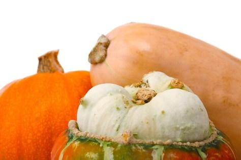 Squash and pumpkin