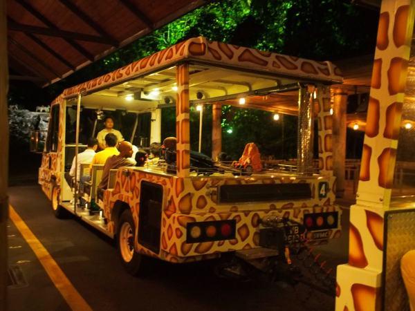 夜間動物園遊園車