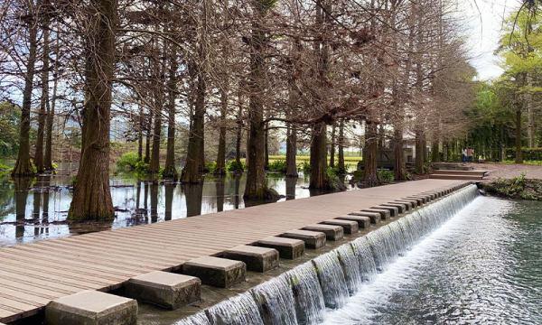 跳石區和木棧道