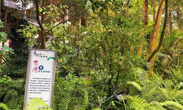 典藏植物園 台灣原生植物