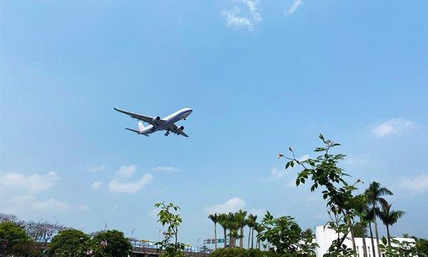 臺北玫瑰園有飛機經過