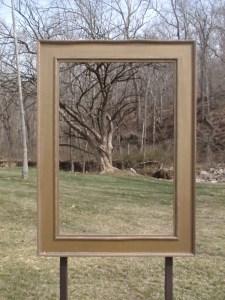 Framing nature at Chrystal Bridges Museum