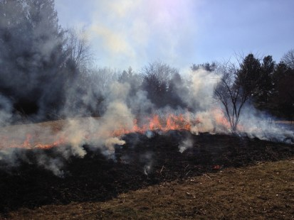 Fire moves rapidly through prairie residue.