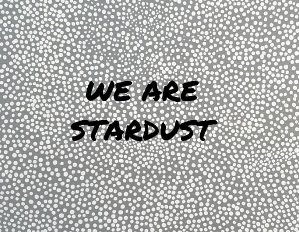We are stardust.