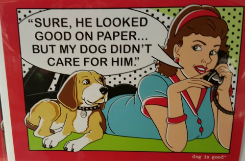 funny-greeting-cards