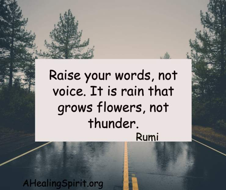 raise-our-words
