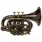 CarolBrass CPT-3000-GLS-Bb-AD Pocket Trumpet