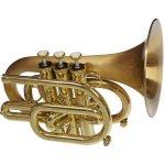 CarolBrass-CPT-3000-GLSD-Bb-SLB-Pocket-Trumpet