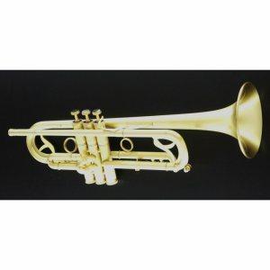 CarolBrass CTR-7000L-YSS Bb Trumpet