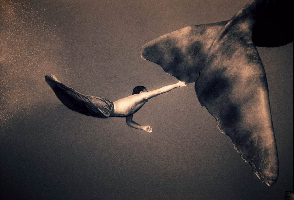 Whale by the tail