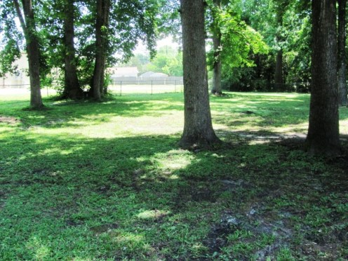 107 Cypress Rear Yard