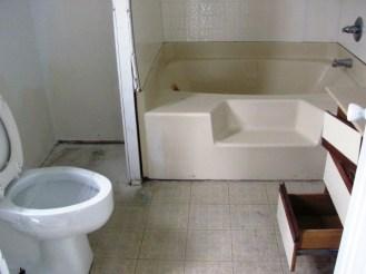 120 Woodbrook Master Bathroom