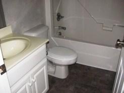 312 Appaloosa Bathroom