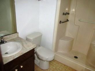 527 W Grantham Master Bathroom