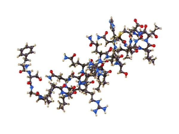 what is peptides