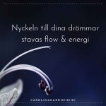 Nyckeln till dina drömmar stavas flow & energi